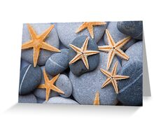 Starfish on a Pebble Beach Greeting Card