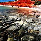 """Bottle Bay"" Francois Peron National Park, Western Australia by wildimagenation"