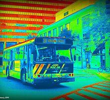 Bus by Thad Zajdowicz