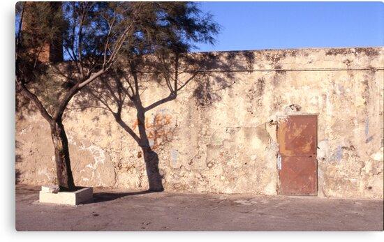 TreeShadowWallDoor by rorycobbe