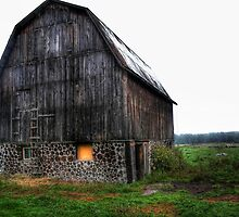 Interesting barn by tanmari