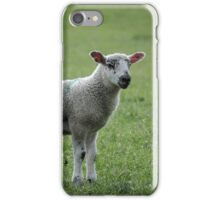 Lamb iPhone Case/Skin