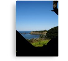 A vision with a view Canvas Print