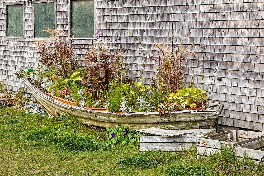 Flower Boat by PhotosByHealy