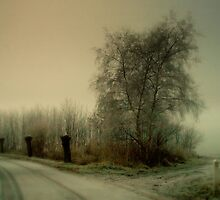 Winter Poetry by PhotomasWorld