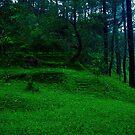 Green Field by mrfriendly