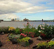 A look at Superior/Duluth by Lynne Prestebak