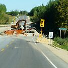 Bridge Rebuilding, Pusquakua River,Sask by MaeBelle