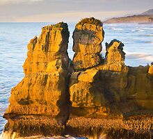 Sea stack at Punakaiki by ianwoolcock