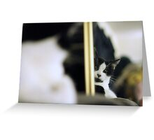 Mirror, Mirreow, on the Wall Greeting Card