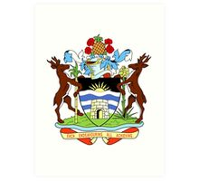 Antigua coat of arms Art Print