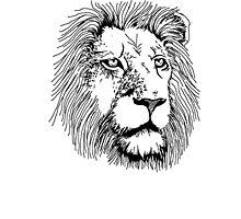 Big Five - Lion Photographic Print
