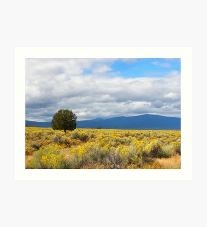 Fields Painted in Yellow Art Print