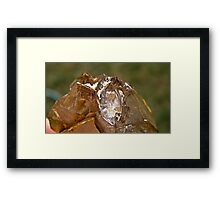 Elestial Crystal with (Herkimar diamond formation) Framed Print
