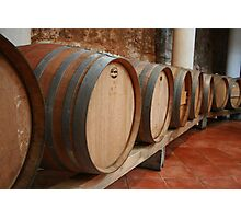 Winery  Photographic Print