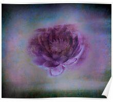 Night Bloom Poster
