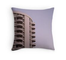 The Compartmentalized Life Throw Pillow