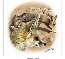 RUEPPELL'S FOX 1 by DilettantO