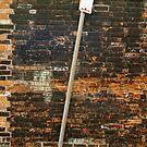 No Parking, Back Alley by Joe Mortelliti
