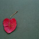 i heart autumn by CoffeeBreak
