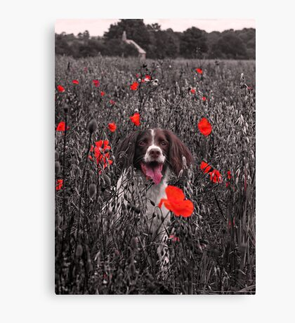 A Loyal Friend to Brighten your Dull Moments Canvas Print