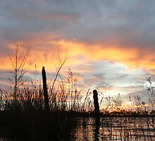 Ripples at Dawn - Lake Curlew, NSW by Gregory McInnes