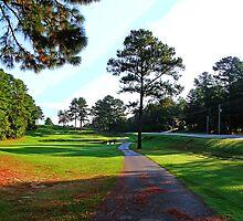 Number Four Alpine Bay Golf Club by Mike Pesseackey (crimsontideguy)