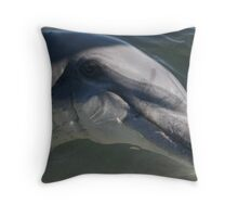 Monkey Mia Dolphin Throw Pillow