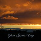 Your Special Day by Eve Parry
