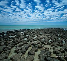 Battle of the Stromatolites, Denham, WA by Malcolm Katon