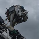 Recycling Man...The Eden Project, Cornwall. by greenstone
