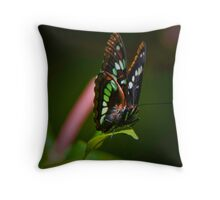Lorquin's Admiral Throw Pillow