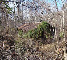 Barn in the Brush by Lisa Richardson