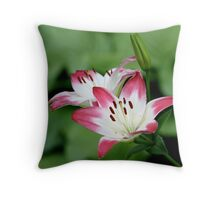 Lily of the Hot-Pink and White Persuasion Throw Pillow