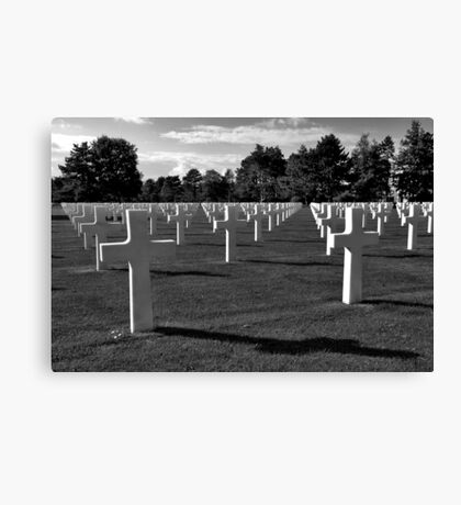 The price of Freedom..... Canvas Print