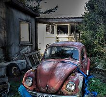 Volkswagen Beetle, North Island, N.Z. by ripphotos