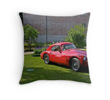 Rest in the garden Throw Pillow