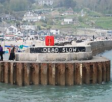 Dead Slow by Claire Elford