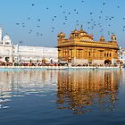 Golden Temple Panorama  by RajeevKashyap