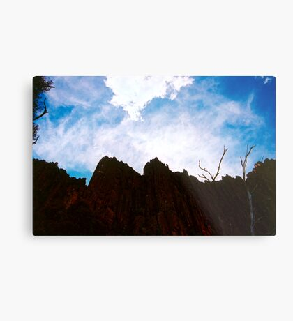 Organ Pipes Metal Print