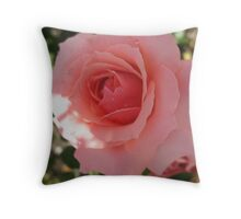 Endearing Rose Throw Pillow