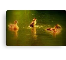 Hey ! I'm the boss ! Canvas Print