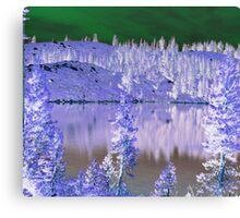 Feeley Lake, abstract Canvas Print