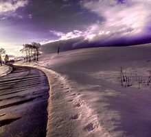 Road in the Snow by Wayne King