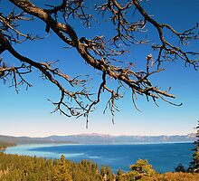 Lake Tahoe View by tom j deters