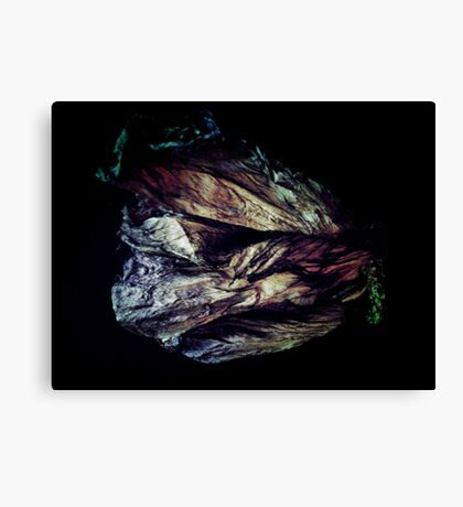 Aged in Beauty Canvas Print
