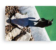 Penguin Shadow Canvas Print