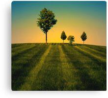 Trees 100 Canvas Print
