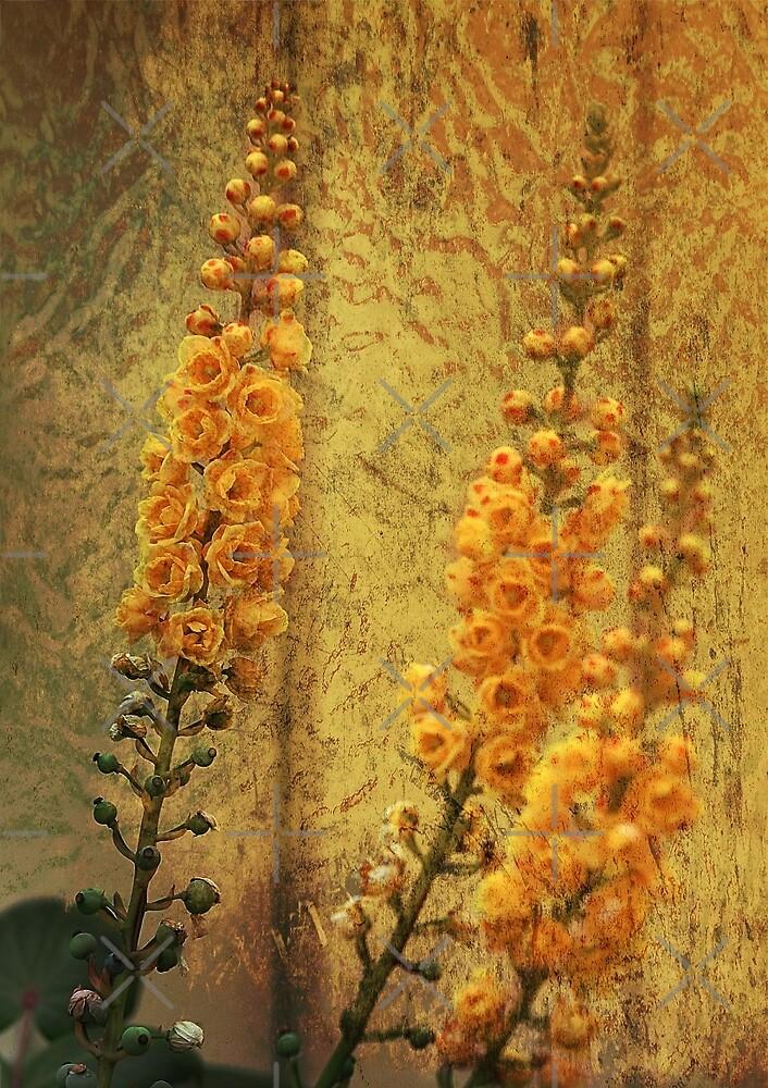 Three Yellow Blooms by CarolM