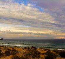 Cape Woolamai Surf Beach by Kamalpreet S. Sawhney